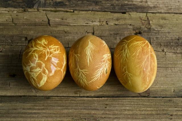 Яйца, окрашенные в луковой шелухе, с узорами из листьев укропа