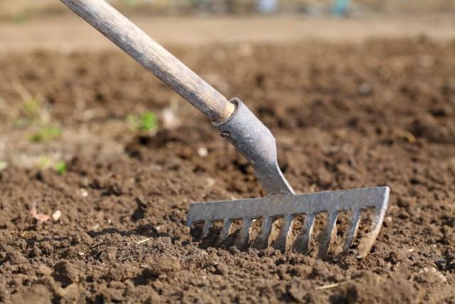 Проводим весеннее боронование и рыхление почвы на грядках