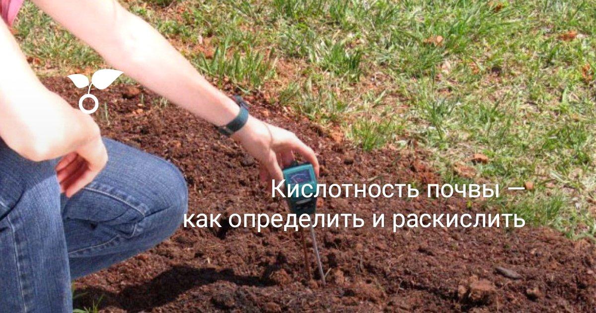 Кислотность песчаной почвы