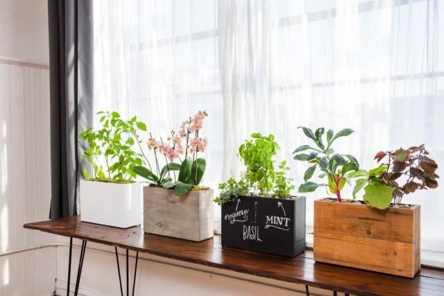 Цветочницы для комнатных растений