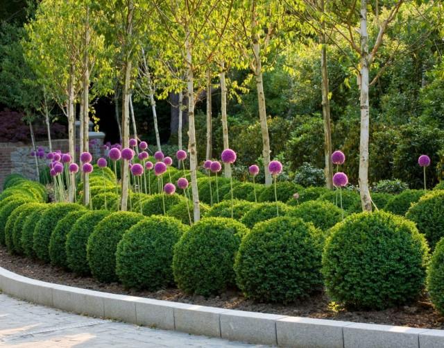 Сад с элементами повторения