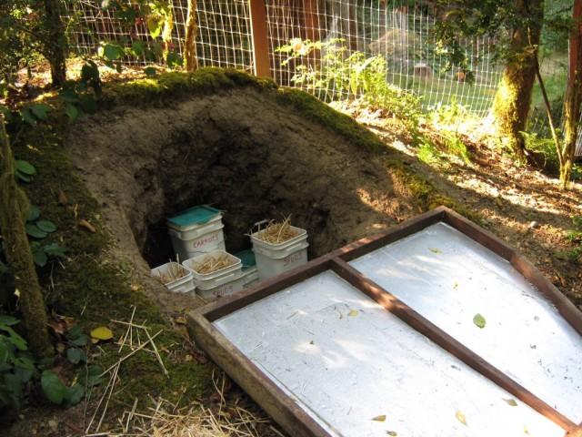 Хранение картофеля в землянке на участке