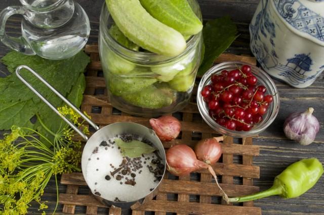 Ингредиенты для приготовления маринованных огурцов с красной смородиной и луком