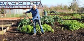 Осенняя подготовка грядок в огороде