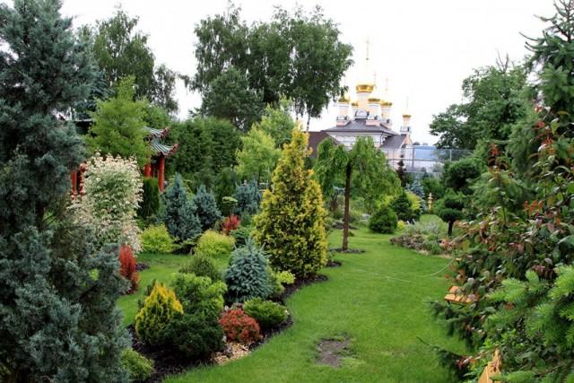 Оформление сада кустарниками и хвойными растениями