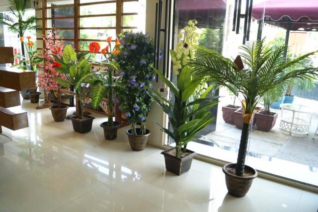 Декоративные растения в фойе здания
