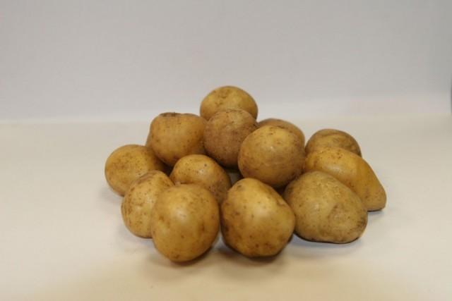 Сорт картофеля для Дальневосточного региона - Валентина