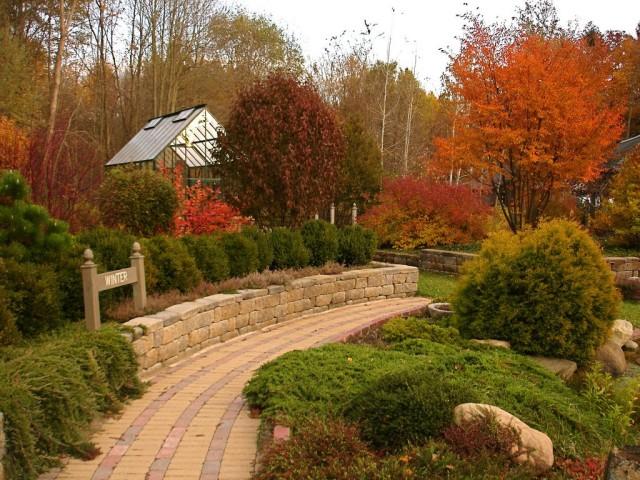 Можжевельники в дизайне сада