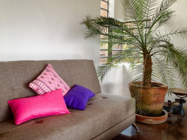 Пальмы в керамическом горшке в интерьере