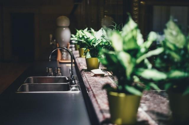 Направленная декоративная подсветка растений