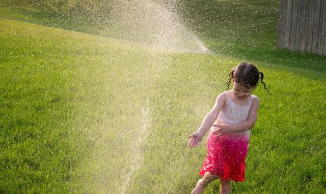 Полив газона в жару нужно проводить раз в два дня