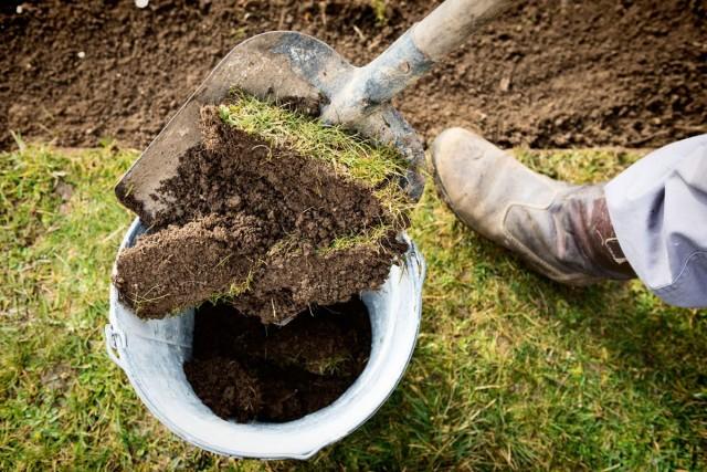 Для получения небольшого количества дерновой земли можно, срезав пласт дернины, просто вытрясти из нее почву в ёмкость