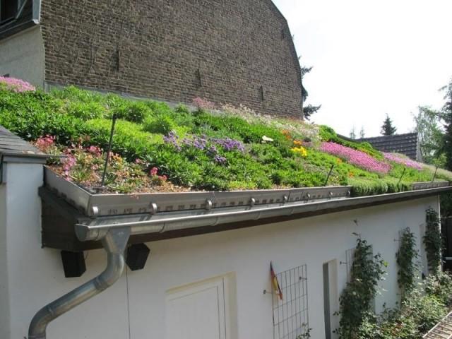 Для разбивки цветников с многолетниками на крыше нужно будет дополнительно выстелить ее защитным корнеизоляционным покрытием