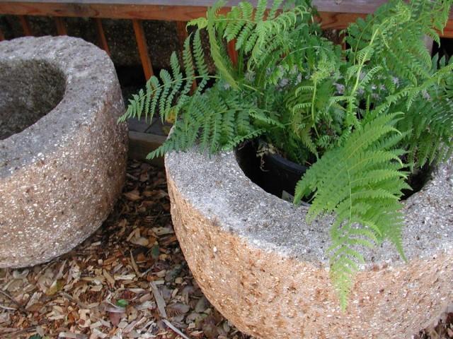 Растения лучше высаживать в дешевые пластиковые горшки, которые вставляют в каменные цветочницы