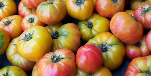 Собирают с куста томаты только с плодоножкой, ее отрезают, но не тянут с куста