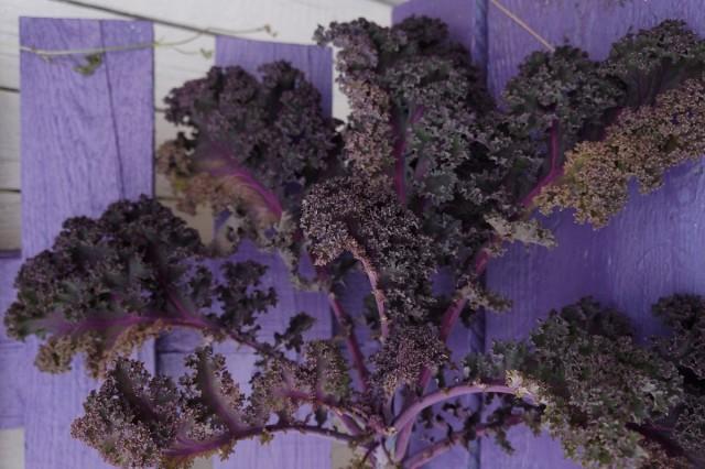 Кудрявая капуста, или Кале фиолетового цвета