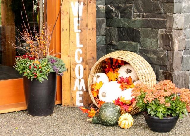 Усилить красоту осенних звезд горшечных садов и композиций в цветочницах поможет дополнительный декор