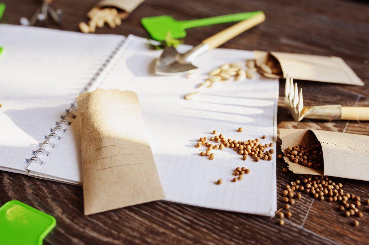 6 правил стратификации семян в домашних условиях. Фото — Ботаничка.ru