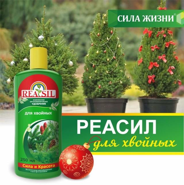 Комплексное органоминеральное удобрение «Реасил» для хвойных растений