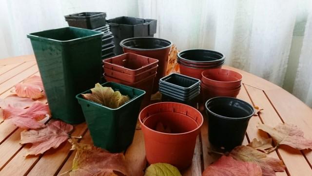 Рассаду в пластиковых горшочках удобно транспортировать