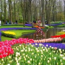 Каждый год выставка цветов в парке Кёкенхоф посвящена разной тематике
