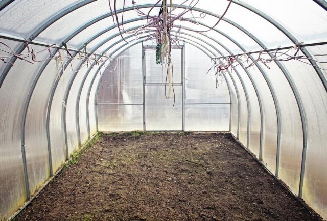 Будет просто отлично , если вы подготовите тепличные грядки к выращиванию баклажан еще с осени