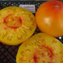 Томат сорта «Грейпфрут» (Pampelmuse)