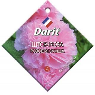 Шток-роза «Розовая замша»