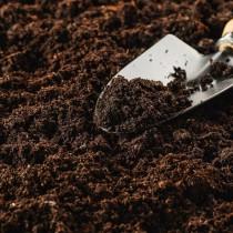 Торфяная почва