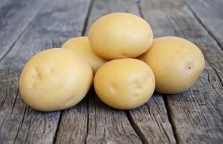 Картофель «Агата»