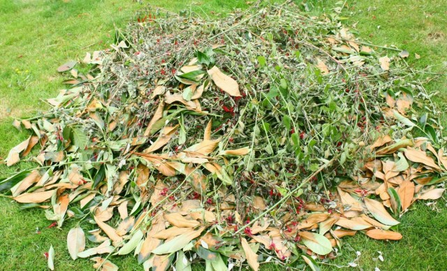 Осеннюю закладку компоста проводят после полной уборки урожая, опадения листьев, пожухлости наземной массы овощных и огородных, тепличных культур