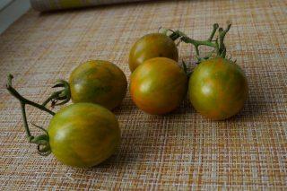Томаты черри «Оранжево-зеленая Зебра» (Solanum lycopersicum var. Cerasiforme 'Orange & Green Zebra')