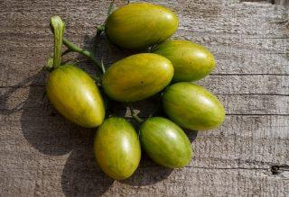 Томаты черри «Зеленый тигр» (Solanum lycopersicum var. Cerasiforme 'Green Tiger')