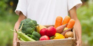 Когда свои овощи и фрукты не полезнее магазинных?