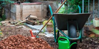 Чем и как мульчировать растения осенью?