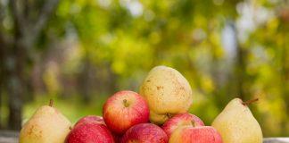 Почему гниют яблоки и груши при хранении?