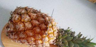 Растим ананас на подоконнике