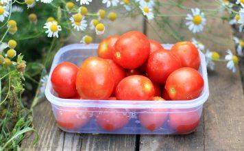 12 сортов томатов, испытанных мною в прошлом году