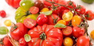 Лучшие сорта раннеспелых томатов от компании «Евросемена» г. Барнаул