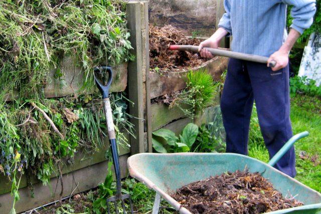 Наиболее приемлемый способ обеззараживания и очистки компоста от вредителей — «горячее» компостирование