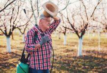 Весенняя защита сада от вредителей без химии