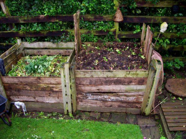 Восстановление почвы желательно начинать с компоста или перепревшего навоза