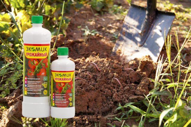 При длительном использовании земли почва не просто истощается – угнетается ее микробиологический состав
