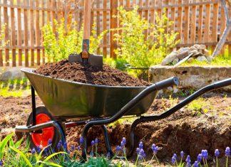 Одним из важных правил высокого урожая является своевременность проведенных работ