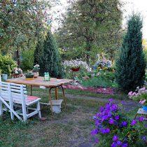 Группа можжевельников одного сорта объединяют сад и делают его стильным