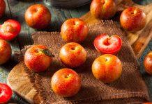 Плумкот, априум и шарафуга — уникальные межвидовые гибриды абрикоса и сливы