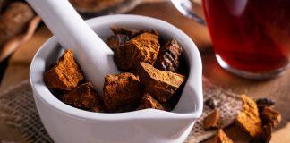Что такое чага — рецепты и неожиданные свойства полезного гриба