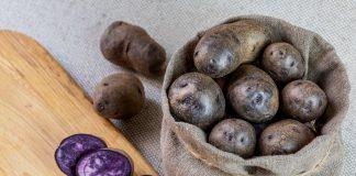 Фиолетовый картофель — преимущества и недостатки по сравнению с традиционным