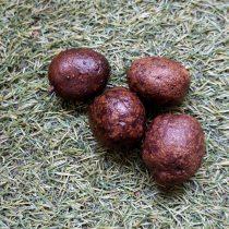 Клубни фиолетового картофеля «Чудесник»