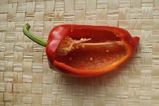 Сладкий перец «Куртовка» в разрезе